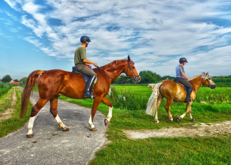 Types of the equestrian clothing and equipment for the horse riders